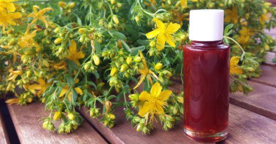 Kantarionovo ulje, domaće, ručno rađeno